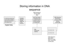 Storing digital data in DNA sequence